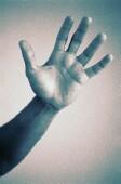 hand_SS36083